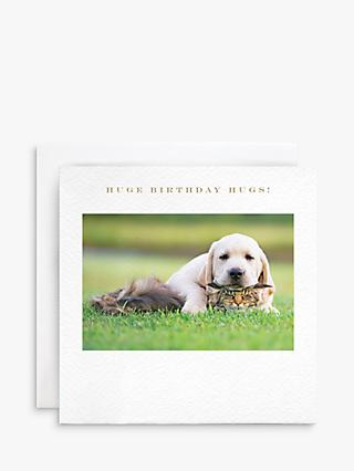 Susan O'Hanlon Labrador Puppy And Cat Birthday Card