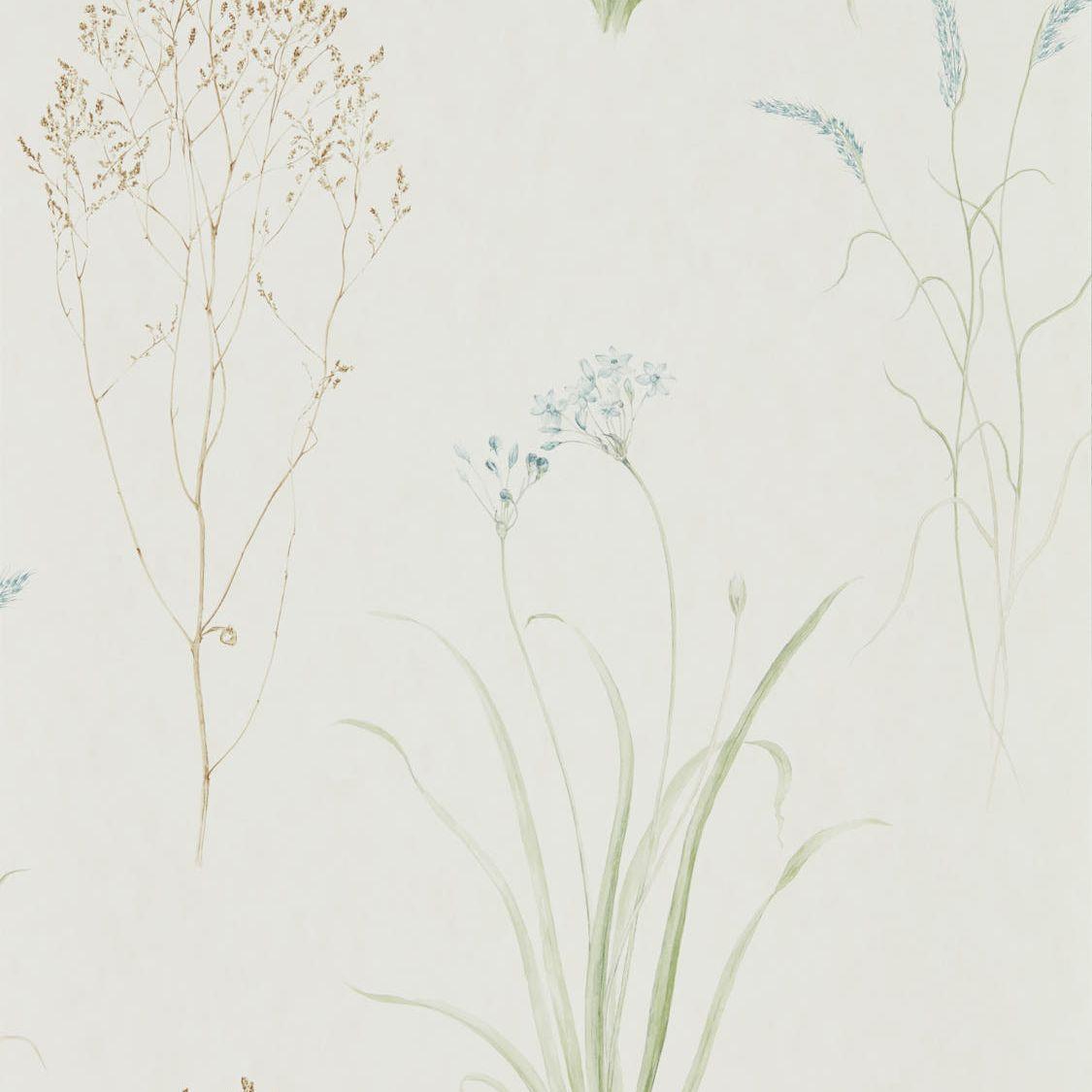 sanderson farne grasses