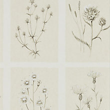 Buy Sanderson Little Thistles Wallpaper Online at johnlewis.com