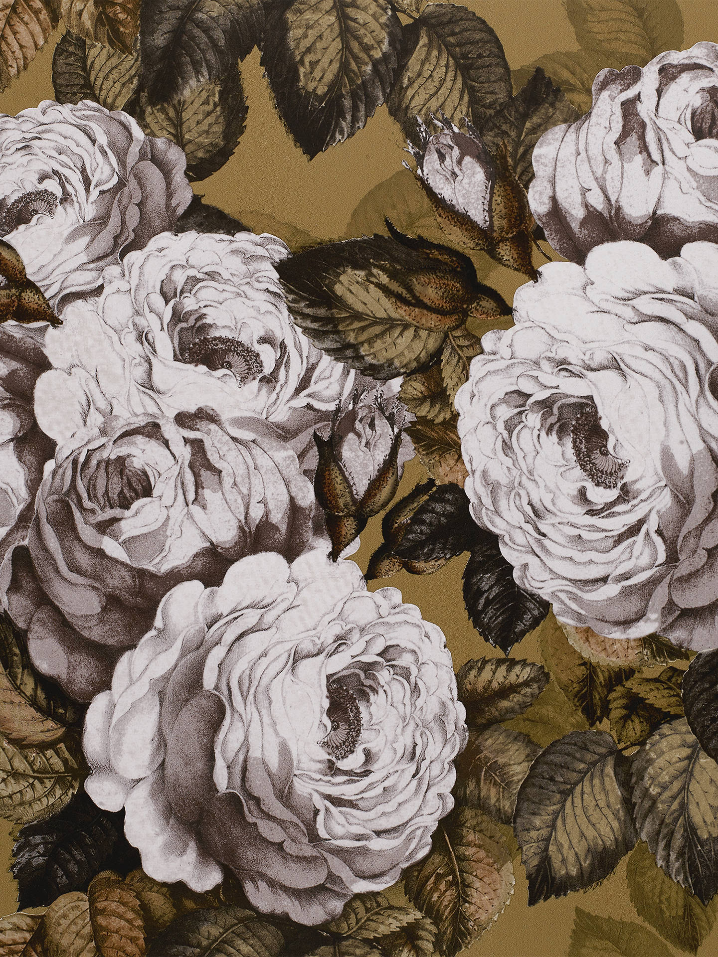 Buy Designers Guild The Rose Wallpaper, PJD6002/04 Online at johnlewis.com