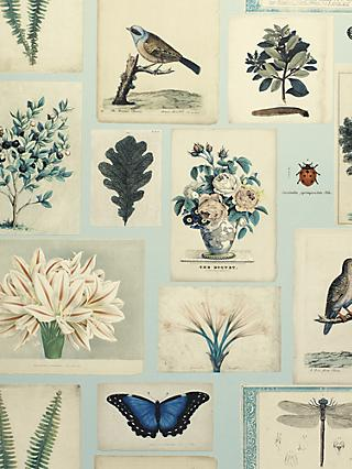 Designers Guild Flora and Fauna Wallpaper