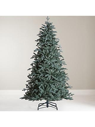John Lewis & Partners Serbian Blue Spruce Unlit Christmas Tree, ... - Christmas Trees Real & Artificial Christmas Trees At John Lewis