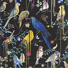 Buy Christian Lacroix Birds Sinfonia Wallpaper Online at johnlewis.com