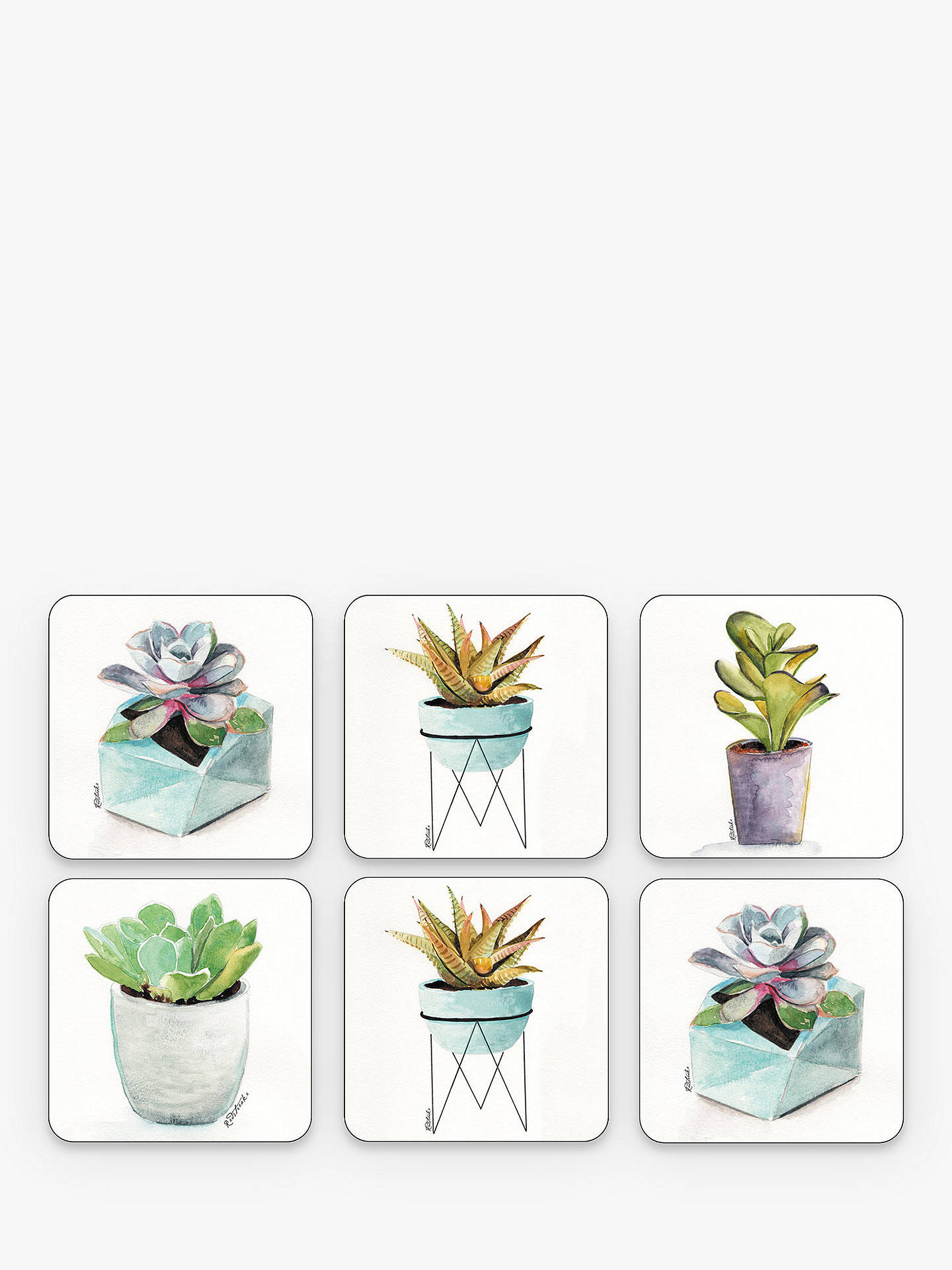 Buy Pimpernel Succulent Plant Coasters, Set of 6 Online at johnlewis.com