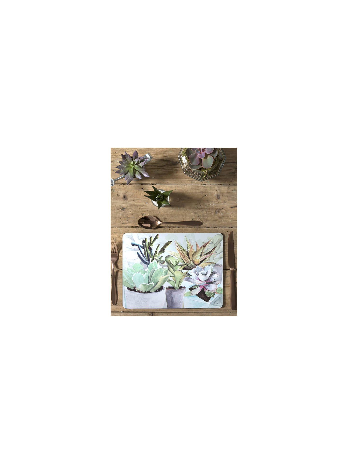 BuyPimpernel Succulent Plant Coasters, Set of 6 Online at johnlewis.com
