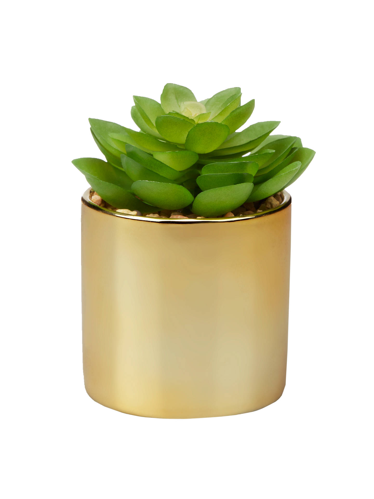 Buy John Lewis & Partners Artificial Flat Succulent Plant in Gold Pot Online at johnlewis.com