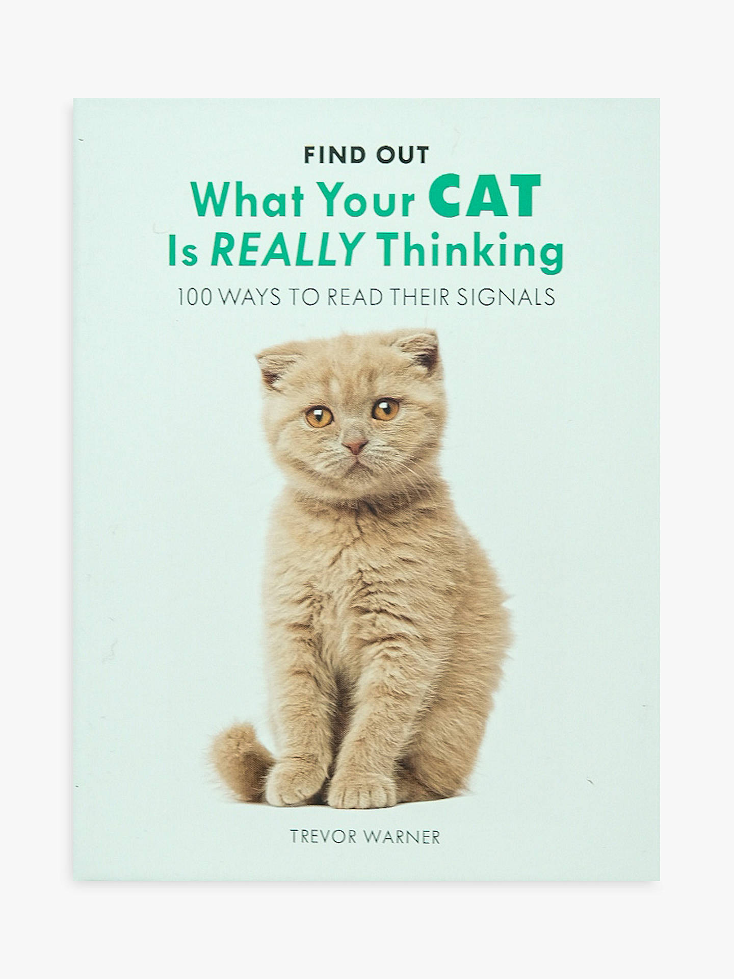 BuyAllsorted What Is Your Cat Thinking Book Online at johnlewis.com
