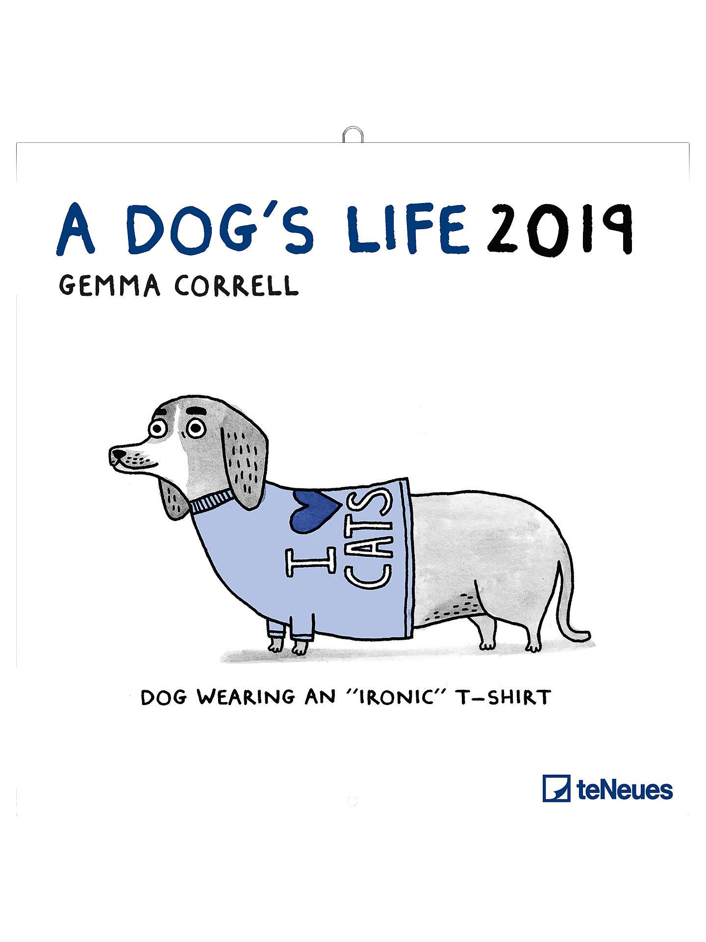 buy teneues gemma correll dogs life square 2019 calendar online at  johnlewis com