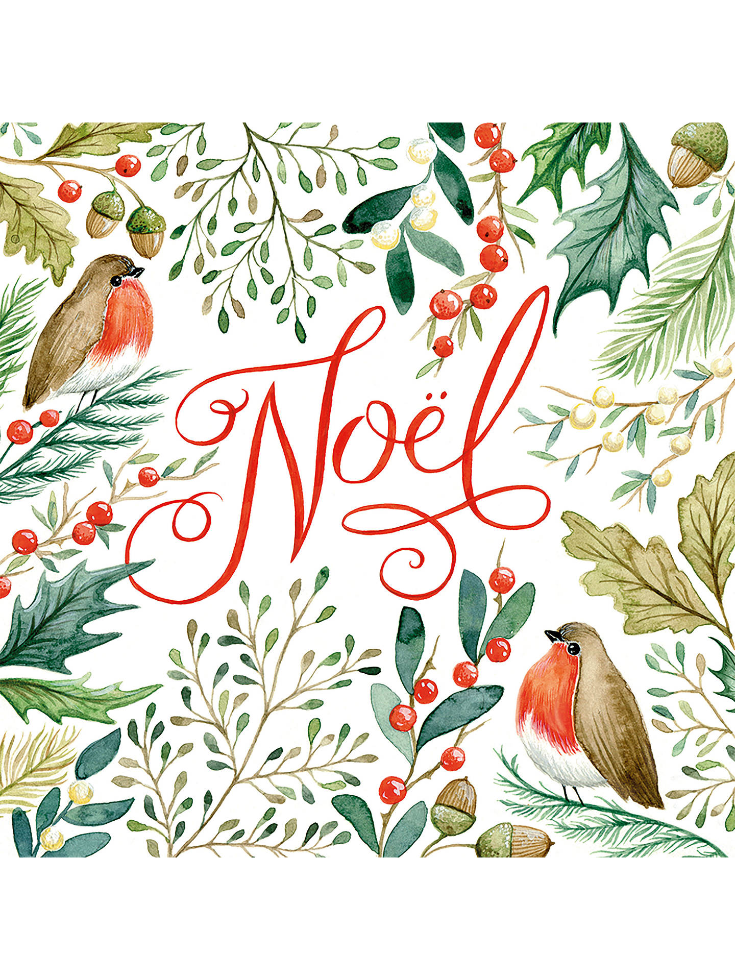 Art File Foliage Noel Robin Cello Christmas Cards, Pack of 6 at John ...
