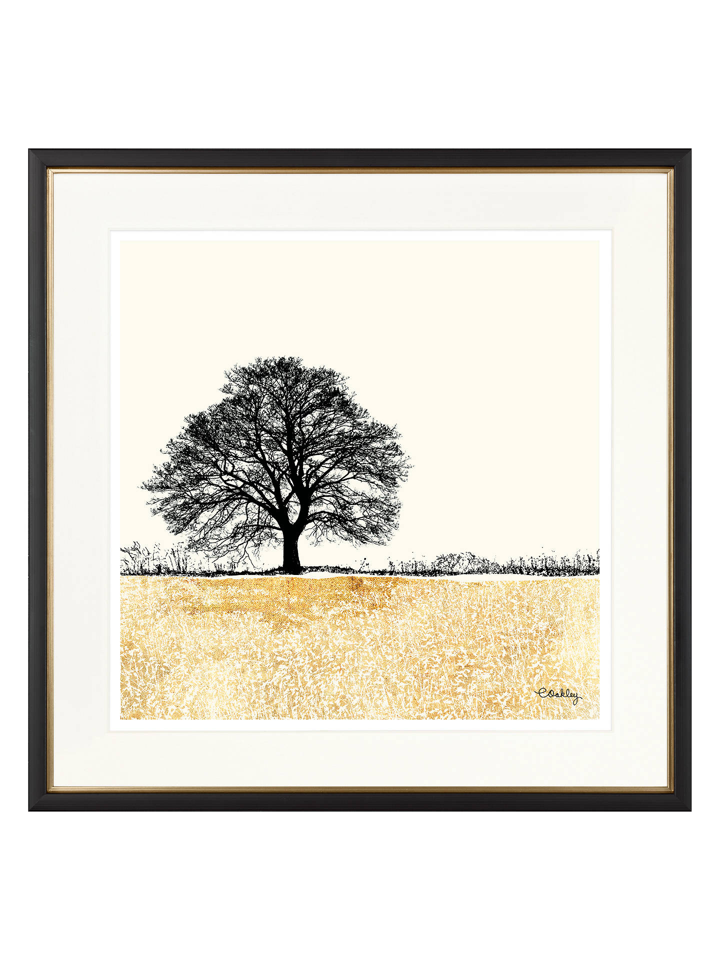 Buy Charlotte Oakley - Tree In Golden Field Framed Print & Mount, 36 x 36cm, Gold Online at johnlewis.com