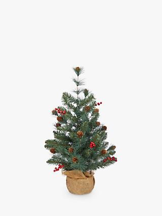 john lewis partners ruby cone berry mini blue spruce
