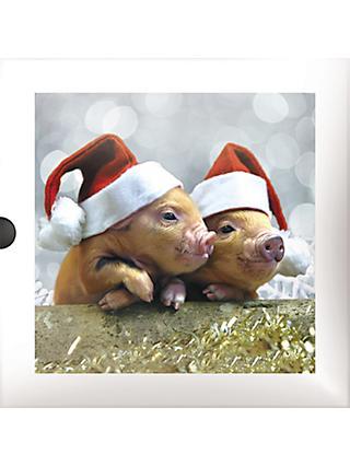 54a2ac8c5bb40 Darkroom Piglets   Lambs Christmas Cards