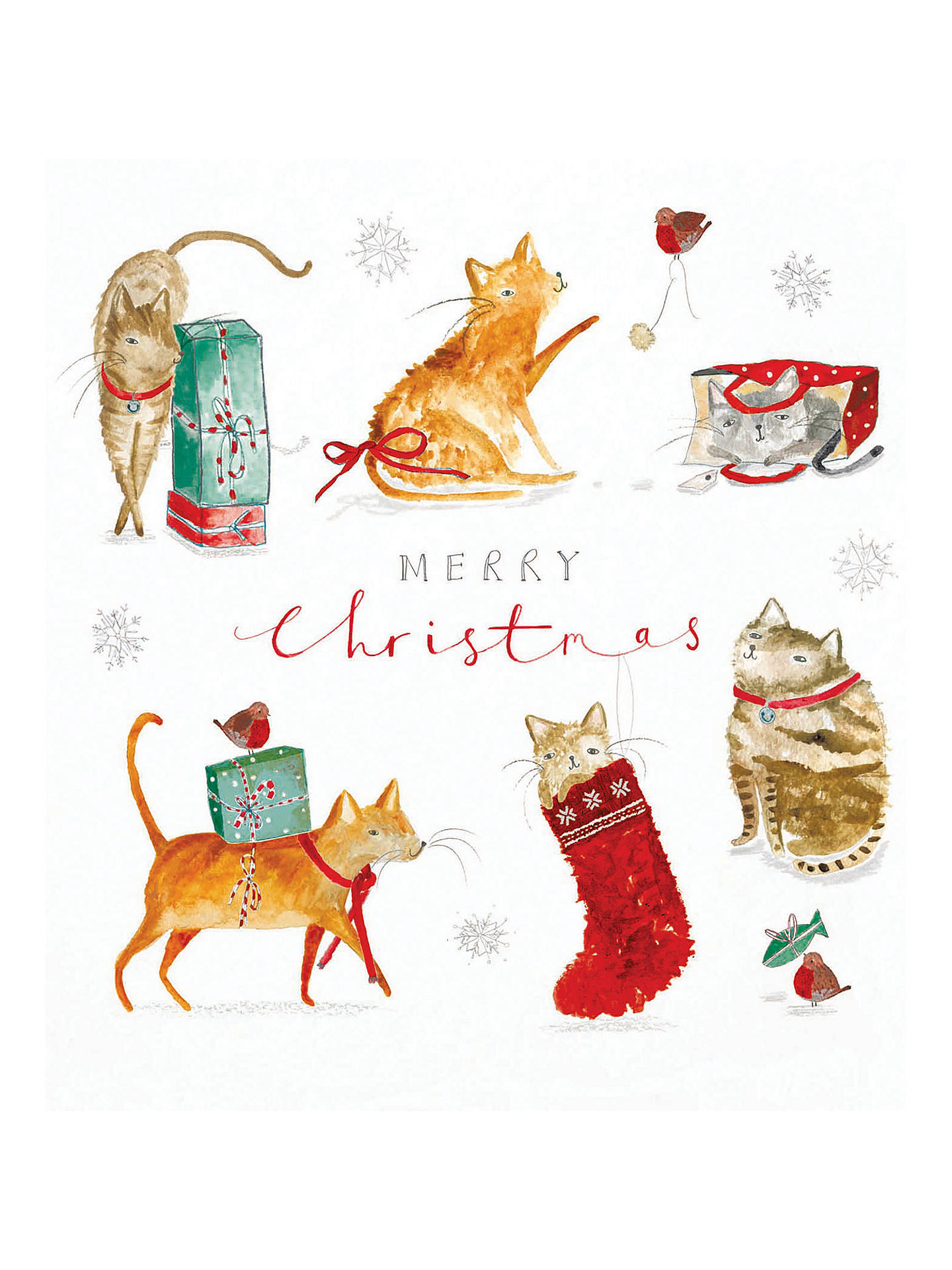 Woodmansterne Festive Cats Christmas Cards, Pack of 5 at John Lewis ...