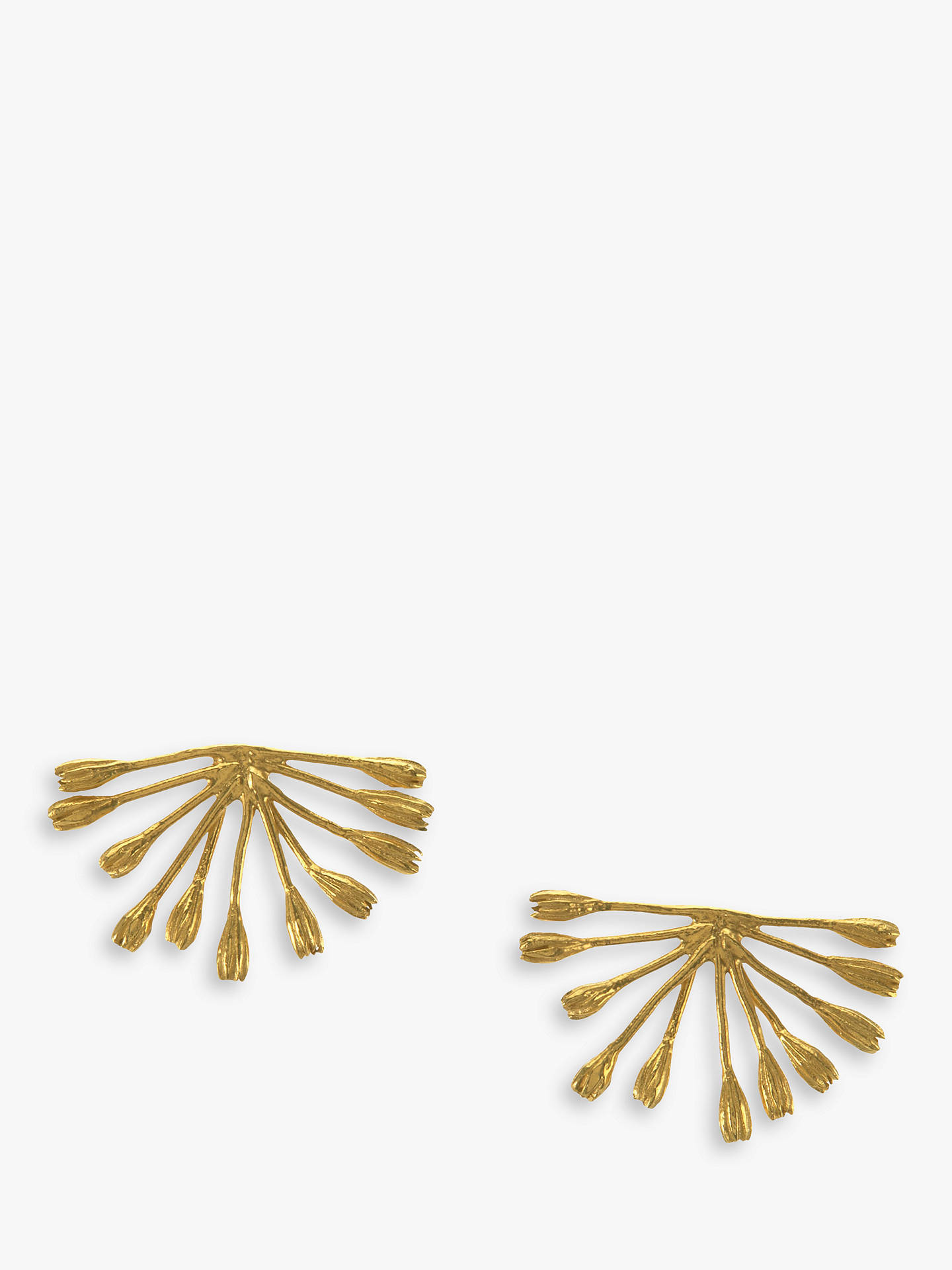 BuyAlex Monroe 22ct Gold Plated Fanned Seed Earrings Online at johnlewis.com