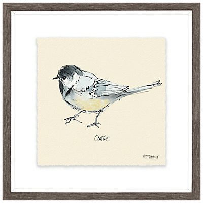 Image of Adelene Fletcher - Coal Tit Bird Framed Print & Mount, 23.5 x 23.5cm