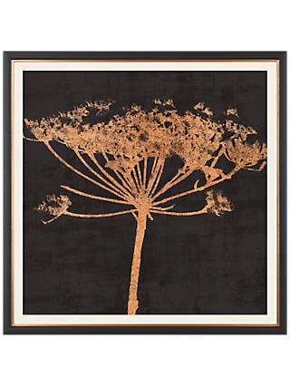 Charlotte Oakley - Copper Allium Framed Print & Mount, 36 x 36cm, Dark Grey/Metallic