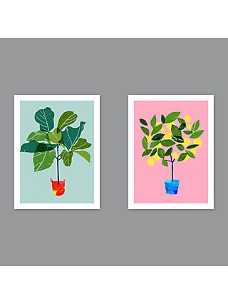 Ana Zaja Petrak - Fig Tree / Lemon Tree Unframed Prints, Set of 2, 40 x 30cm