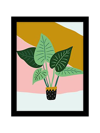 John lewis graphic plant pot framed print 43 5 x 33 5cm