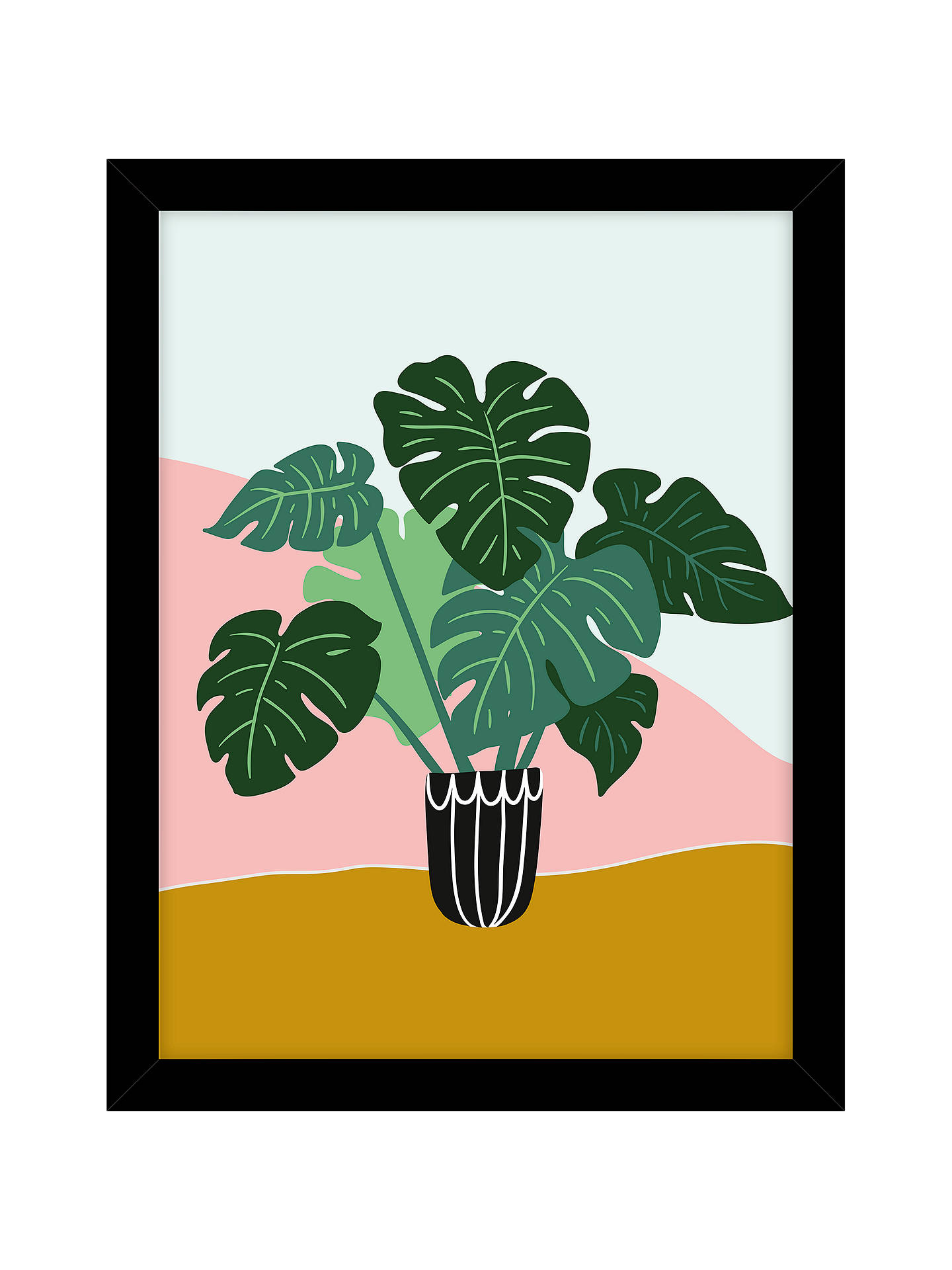 Buy John Lewis & Partners Cheese Plant Pot Framed Print, 43.5 x 33.5cm Online at johnlewis.com
