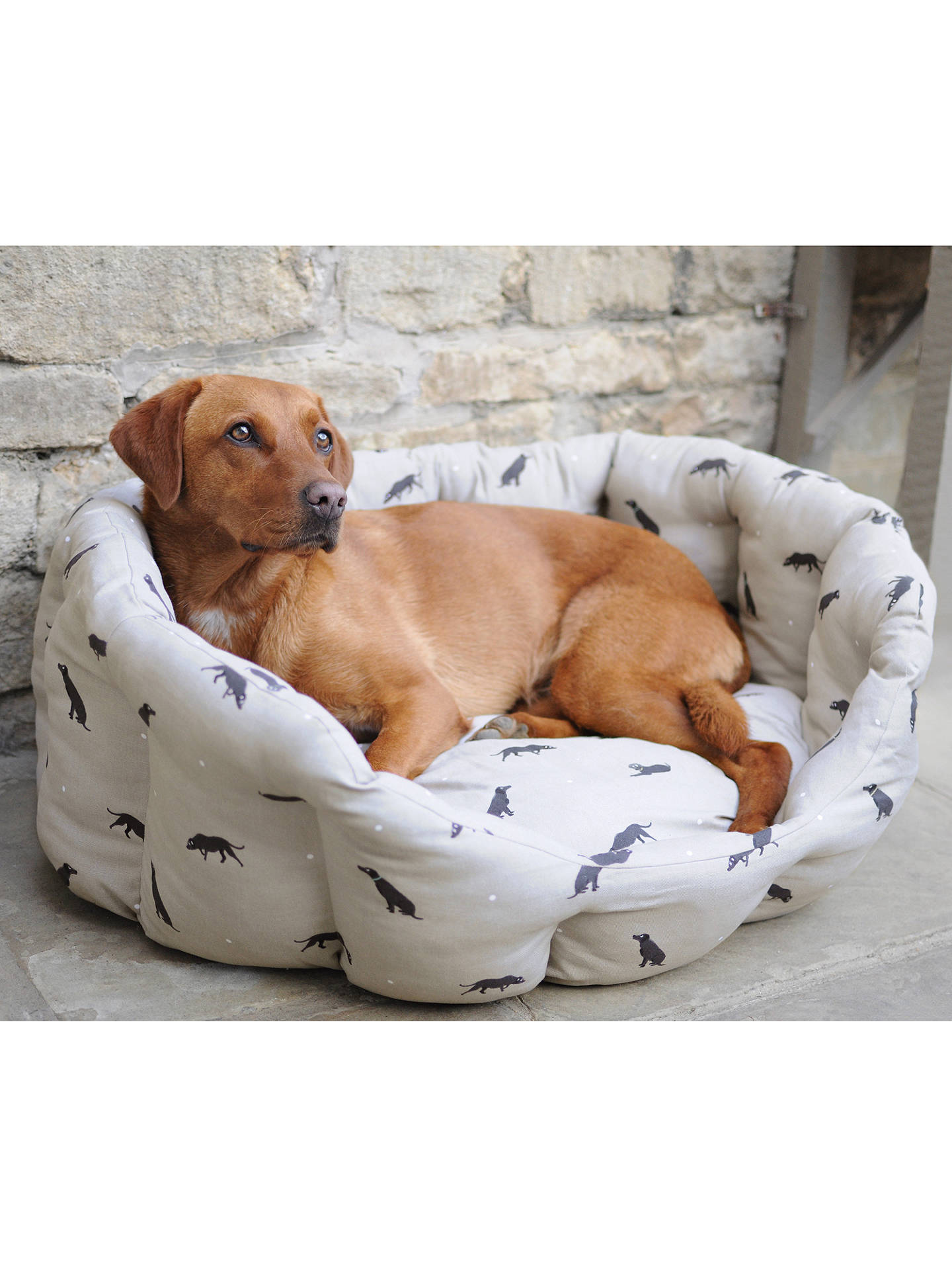 BuySophie Allport Labrador Dog Bed, Large Online at johnlewis.com