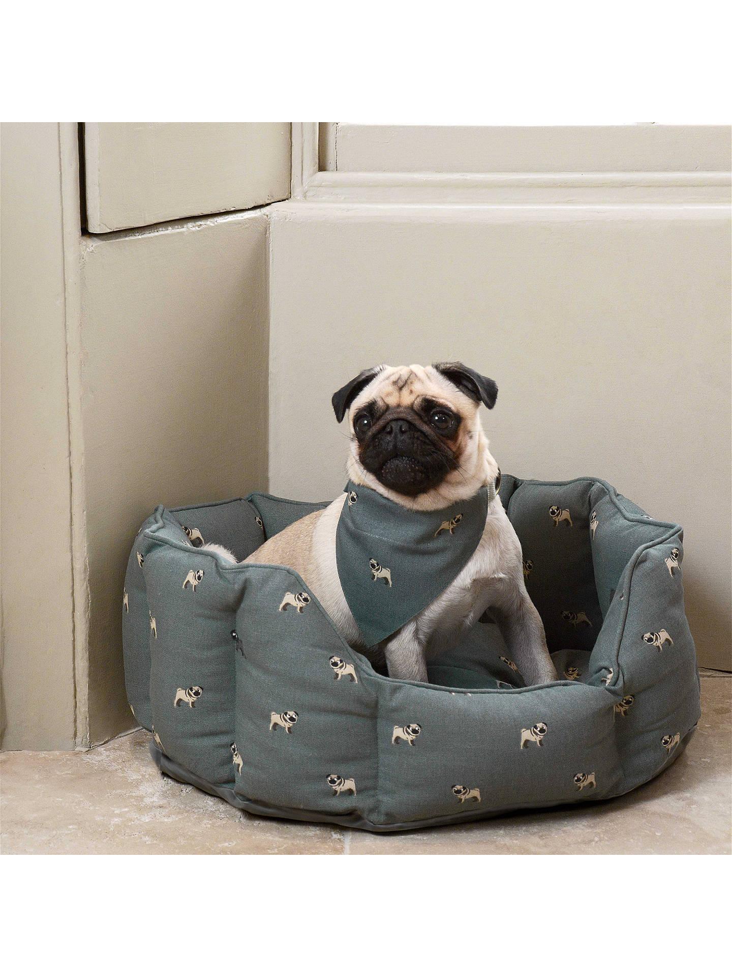 b5de2668384 ... Buy Sophie Allport Pug Dog Bed