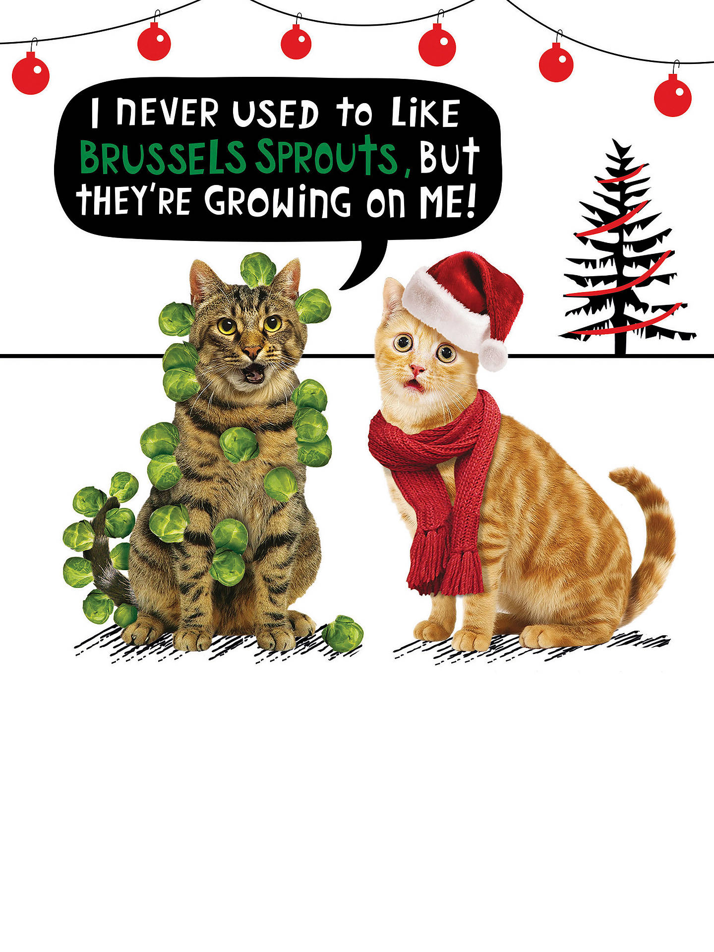 BuyCardmix Brussels Sprouts Christmas Card Online at johnlewis.com