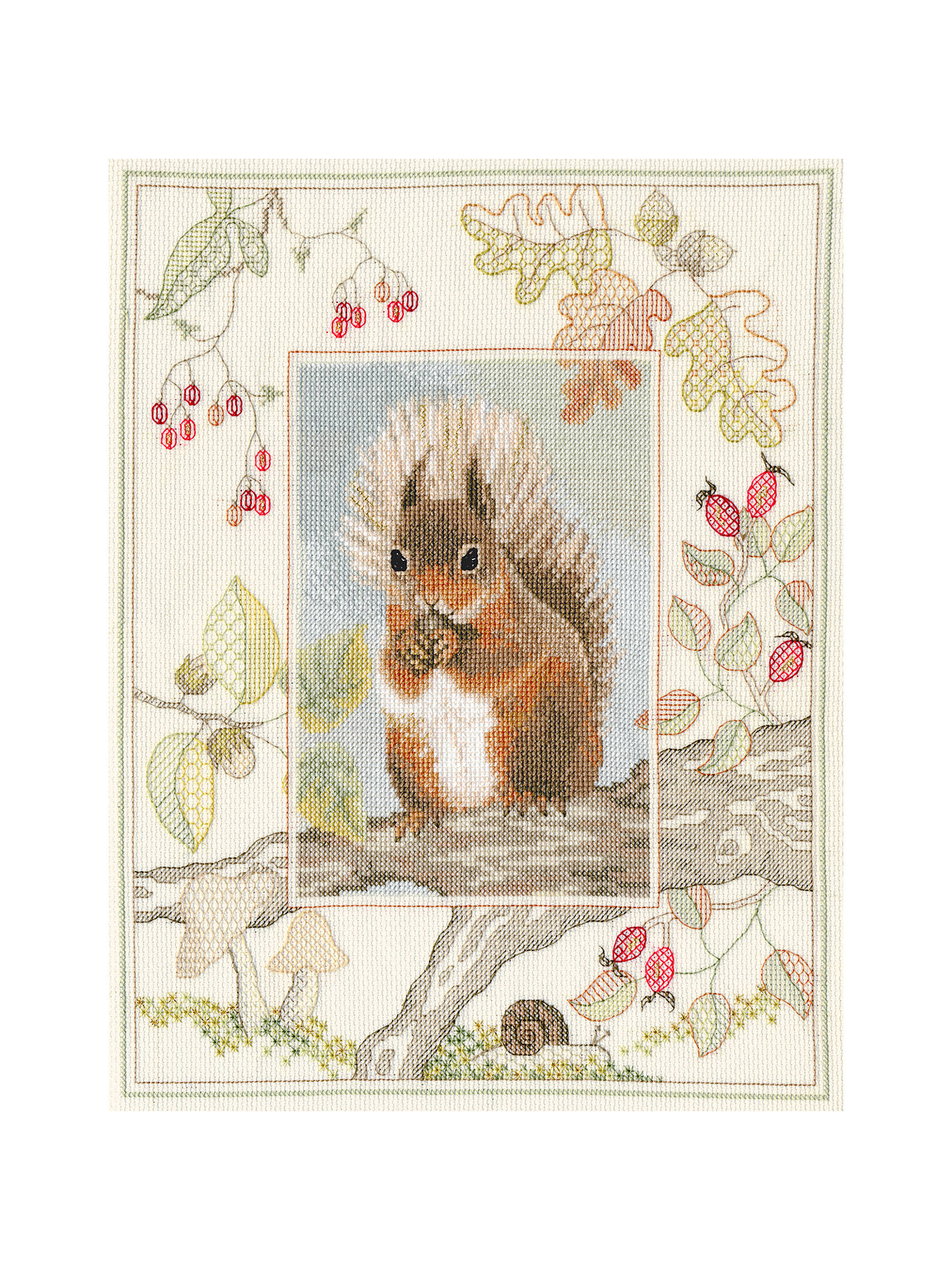 Buy Derwent Wildlife Squirrel Cross Stitch Kit Online at johnlewis.com