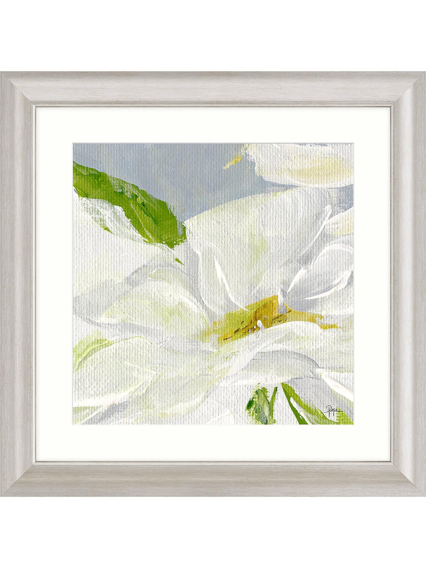 Susan Pepe Single Daisy Framed Print & Mount, 68.5 x 68.5cm
