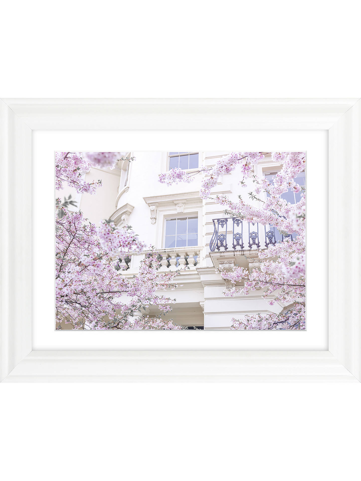 Buy Assaf Frank - London Blossom I Framed Print & Mount, 37 x 47cm Online at johnlewis.com