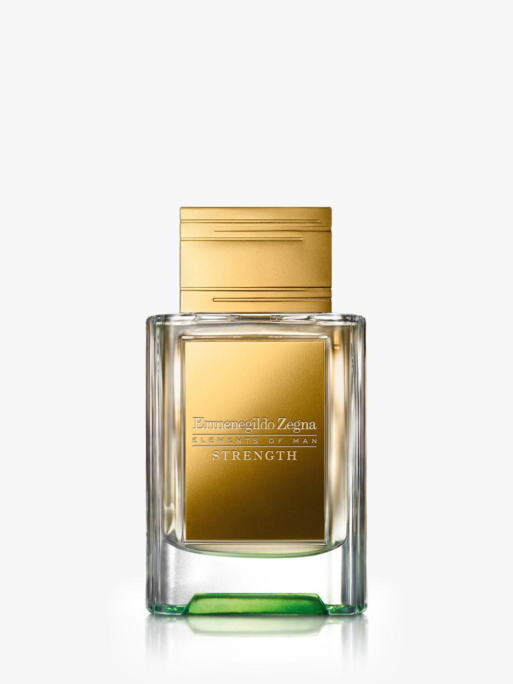 Ermenegildo Zegna Ermenegildo Zegna Elements of Man Strength Concentrate de Parfum, 50ml