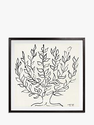 Matisse - The Plain Tree 1951 Framed Print & Mount, 102 x 102cm