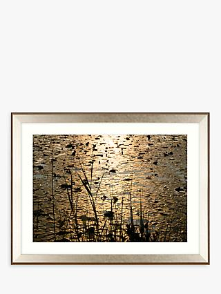 Mike Shepherd - Lillies Framed Print & Mount, 85 x 111cm