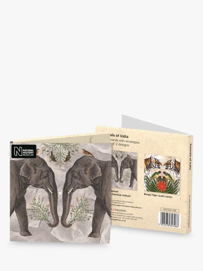 Museums & Galleries Natural History Museum India Animals, Pack of 8