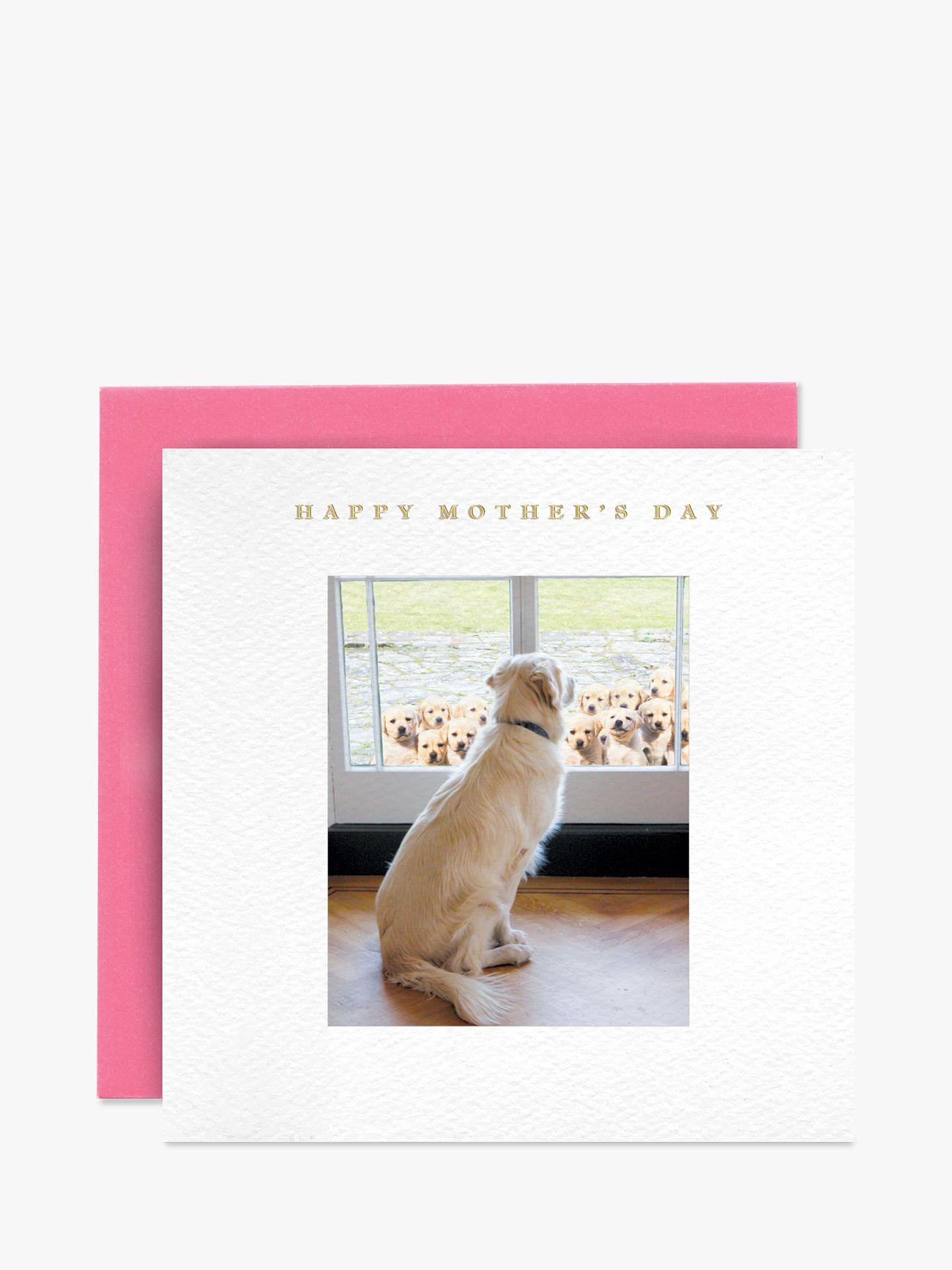 Susan O'Hanlon Susan O'Hanlon Retriever & Pups Mother's Day Card