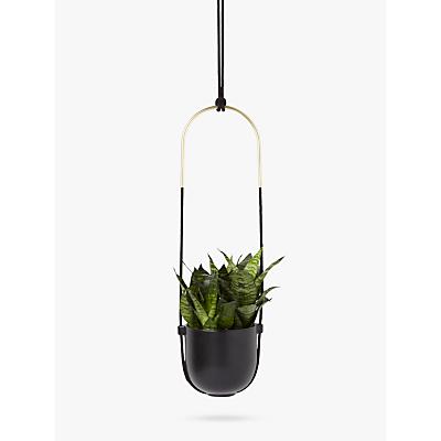 Umbra Bolo Hanging Planter, Black/Brass