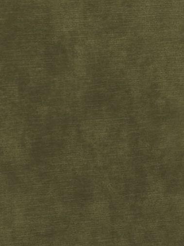 Tate Velvet Conifer