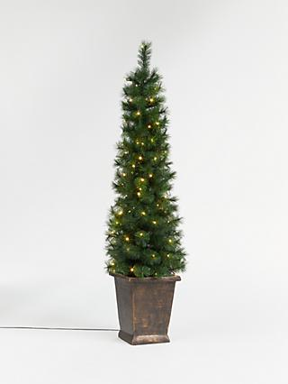 John Lewis & Partners Pencil Pine Potted Pre-lit Christmas Tree, 5ft