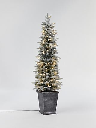 John Lewis & Partners Verbier Potted Pre-lit Christmas Tree, 5ft
