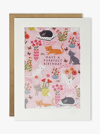James Ellis Stevens Shakies Purrfect Birthday Card