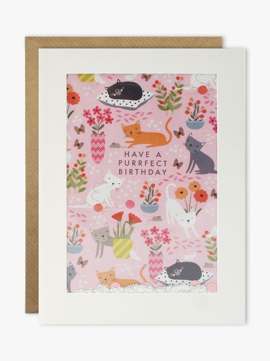 James Ellis Stevens James Ellis Stevens Shakies Purrfect Birthday Card