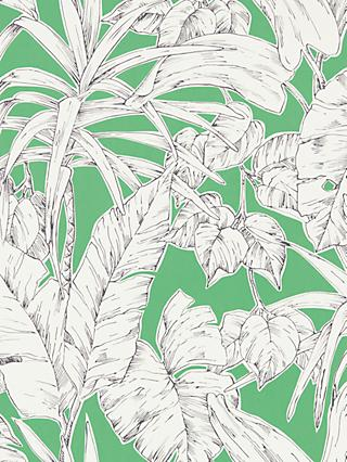Scion Parlour Palm Wallpaper