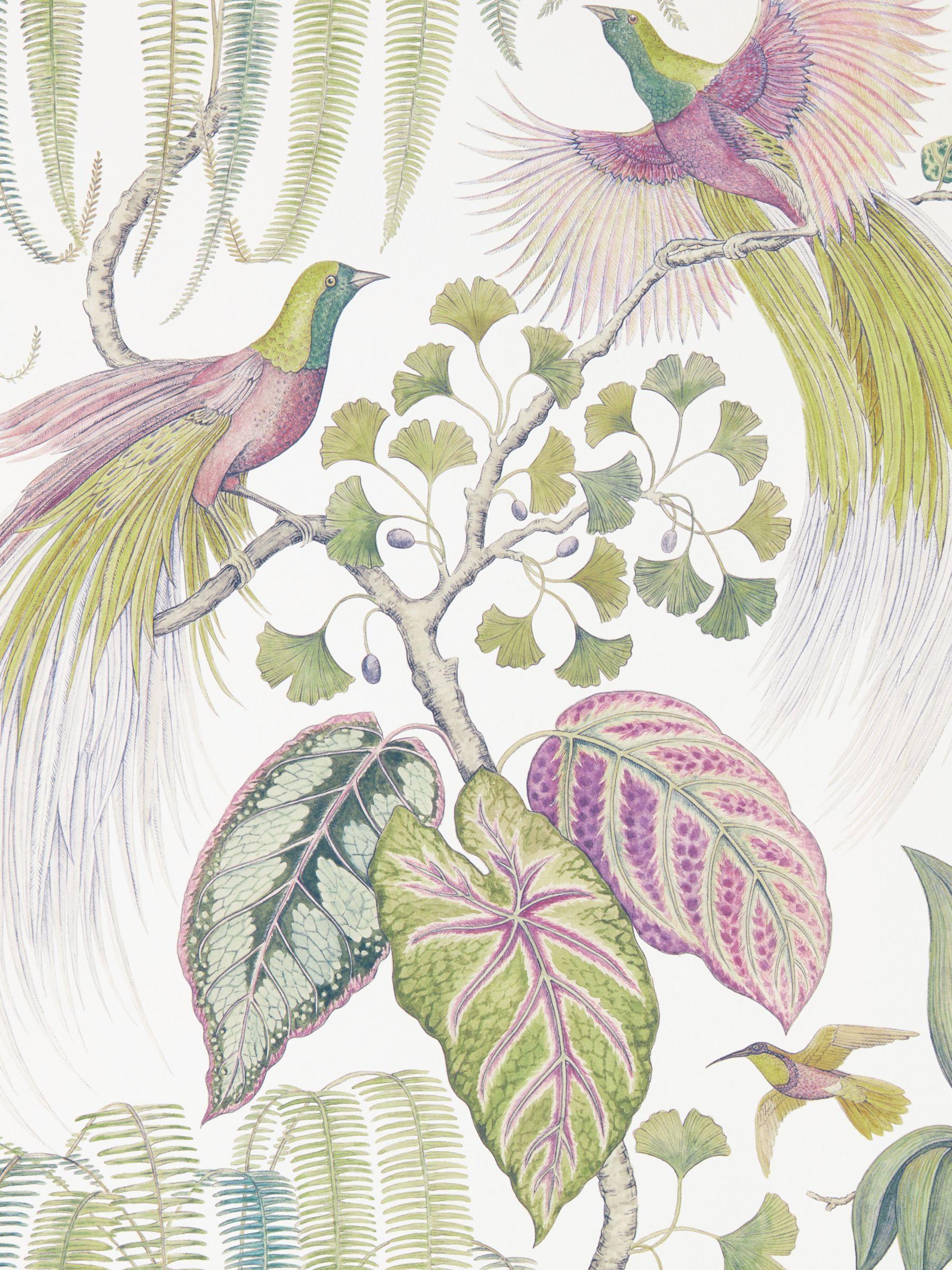 Sanderson Sanderson Bird of Paradise Wallpaper