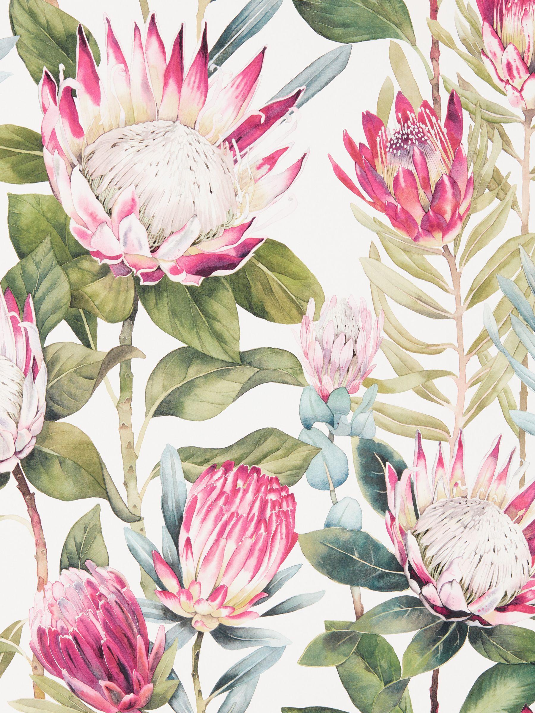 Sanderson Sanderson King Protea Wallpaper