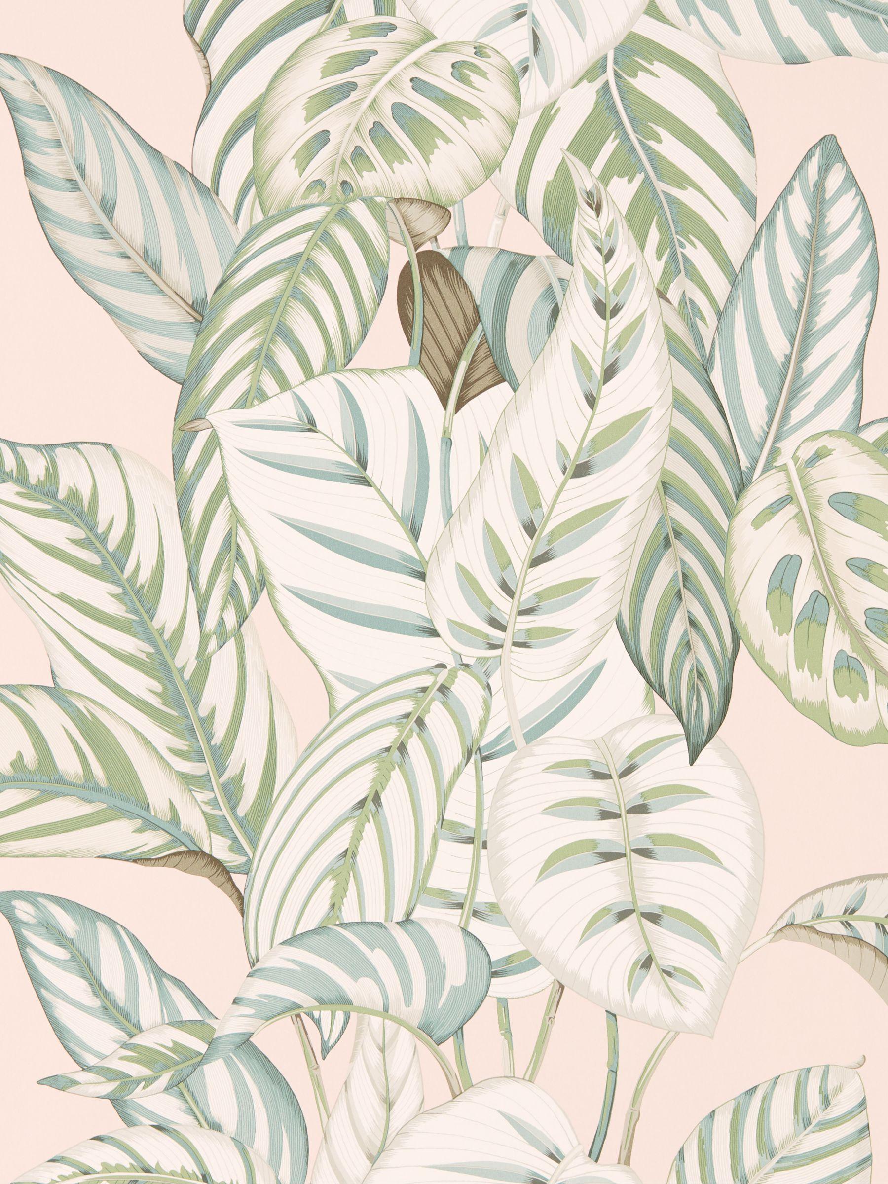 Sanderson Sanderson Calathea Wallpaper