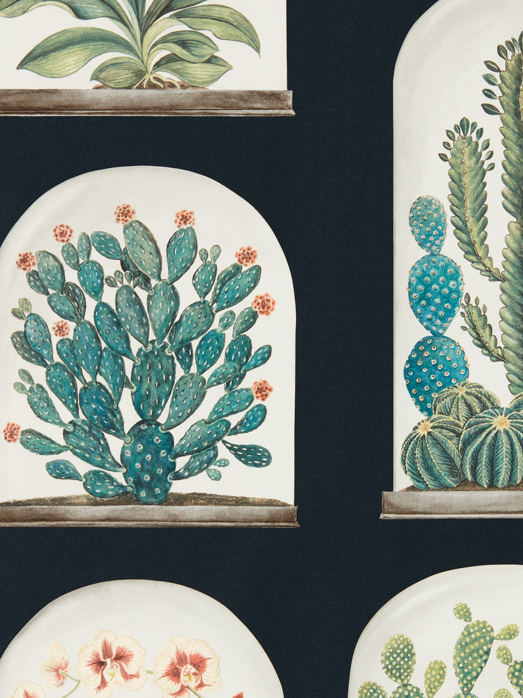 Sanderson Sanderson Terrariums Wallpaper