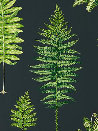 Sanderson Fernery Wallpaper