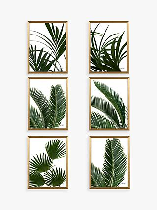 Linda Wood - Tropical Leaves Framed Prints & Mounts, Set of 6, 42 x 32cm, Green/Gold