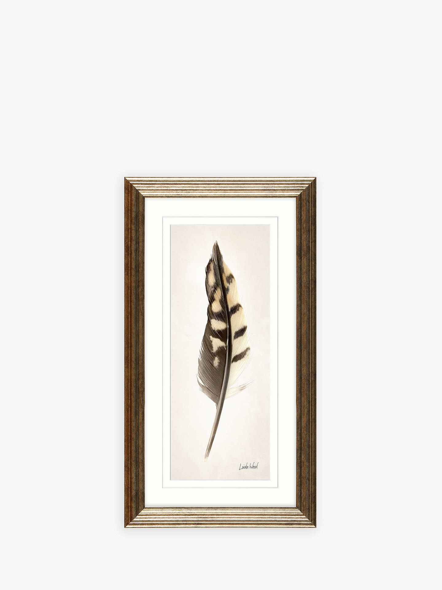 Buy Linda Wood - Feathers Framed Prints & Mounts, Set of 3, 67 x 37cm, Champagne Online at johnlewis.com