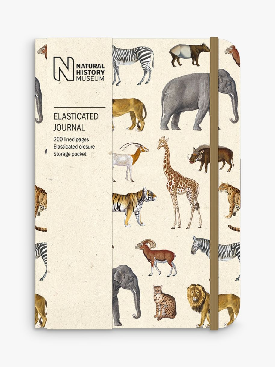 Museums & Galleries Museums & Galleries Natural History Museum Safari Notebook