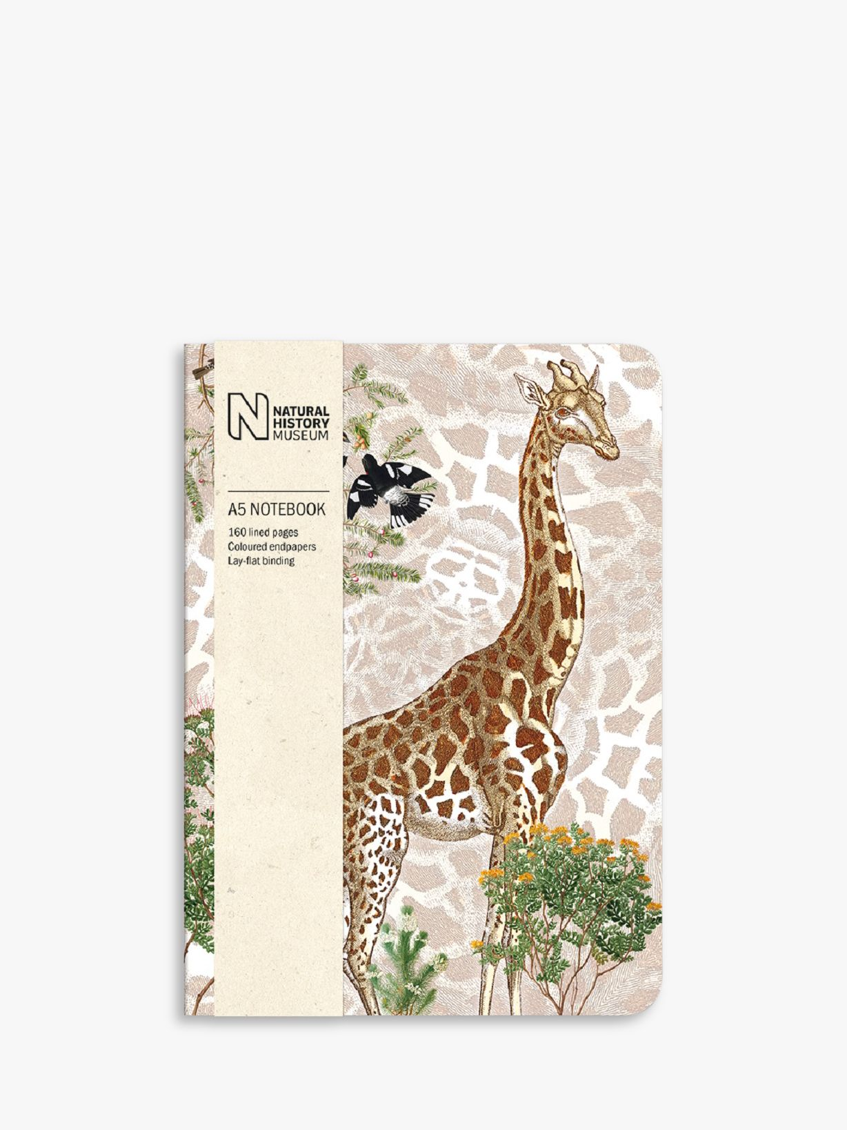Museums & Galleries Museums & Galleries Natural History Museum A5 Giraffe Notebook